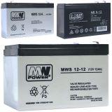 Akku Batterie für Kinder-Elektrofahrzeuge 6V, 12V, 24V / 7-14Ah